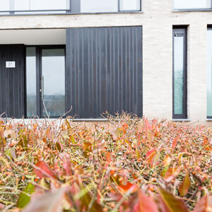 realisatie Woodface WR Ceder zwart geolied Appartementen Ronse 5